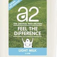 Curtin A2 Milk Study