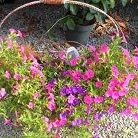 Tripple Ridge Produce and Greenhouse