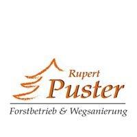 Forstbetrieb Rupert Puster