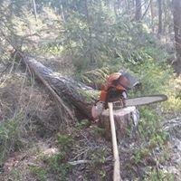 Forstbetrieb Probst