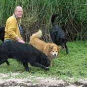 Walkies-Edinburgh Dog Walker