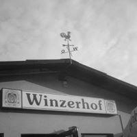 Winzerhof Hoffmann