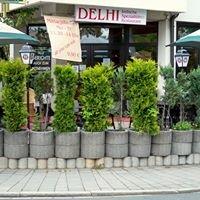 Delhi Indisches Restaurant