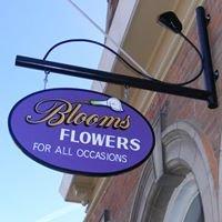 Blooms Flowers