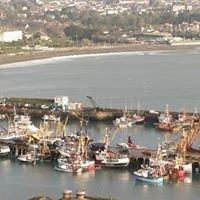 Newlyn Fish Company