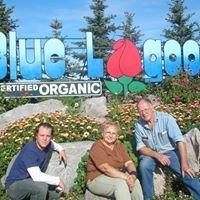 Blue Lagoon Organics