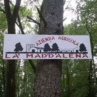 Azienda Agricola La Maddalena