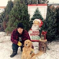 Lucs Christmas Trees at the Calgary's Farmers Market