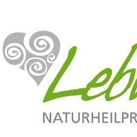 Naturheilpraxis Lebherz