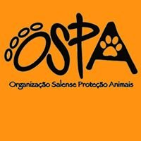Ospa Cabo Verde Cats and Dogs