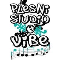 Plesni studio VIBE