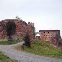 Rocca Di Verrua Savoia
