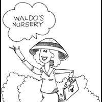 Waldo's Nursery