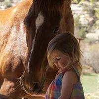 LaSal Creek Equine Retirement