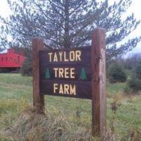 Taylor Tree Farm
