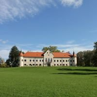 Dvorac Luznica
