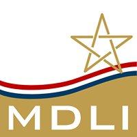 Moroccan Dutch Leadership Institute