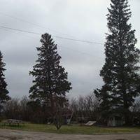Tall Spruce Farm