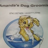 Amanda's dog grooming
