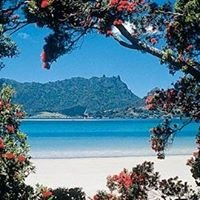 Whangarei Heads Property - Chris Hannam