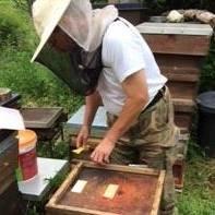 Dunctonwood Honey