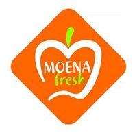 Moena Fresh