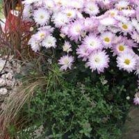 Bonnie's Greenhouse