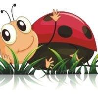 Bugs and Beetles Nursery School