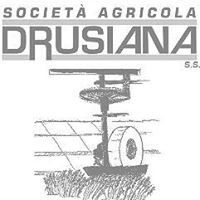Società Agricola Drusiana