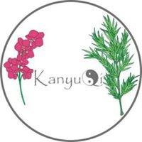 KanyuQi - Feng Shui Beratung