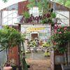 Natures Hideaway Gardens/Farm Market
