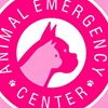 Animal Emergency and Surgery Center