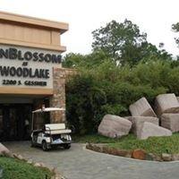 SunBlossom at Woodlake: Westchase, TX
