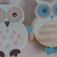 The owl and button boutique