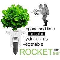 Rocketeer( hydroponic vegetable farm )