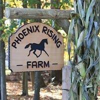 Phoenix Rising Farm