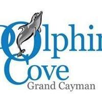 Dolphin Cove, Grand Cayman