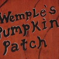 Wemple's Pumpkin Patch