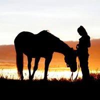 True Horsemanship - Listening not Whispering