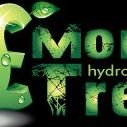 Money Tree Hydroponics