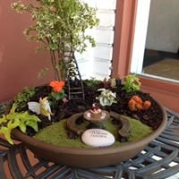 Fairy Gardens for All Occasions