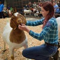 Owl Hill Boer Goats