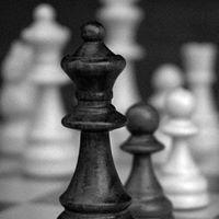 Chess Frisør Moa