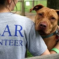 Young Friends of Main Line Animal Rescue