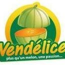 Vendelice Le Melon