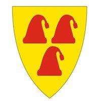 Nissedal kommune
