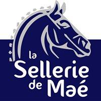 Sellerie de Maé