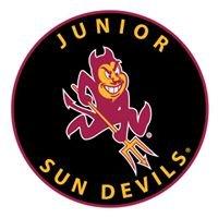 Desert Youth Hockey Association