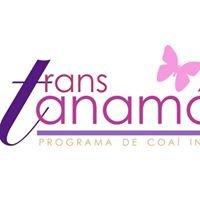 Trans Tanamá