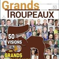Grands Troupeaux